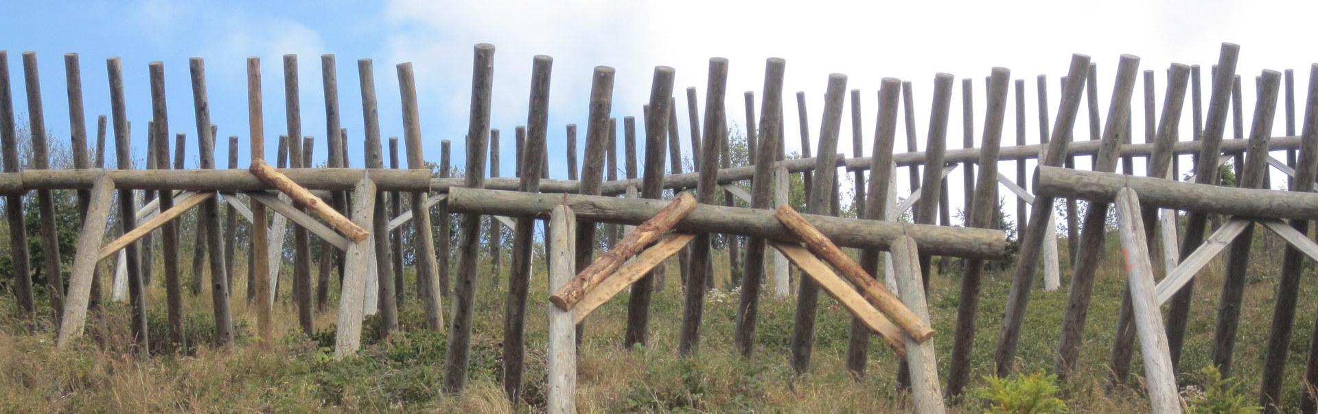 Paravalanghe in legno